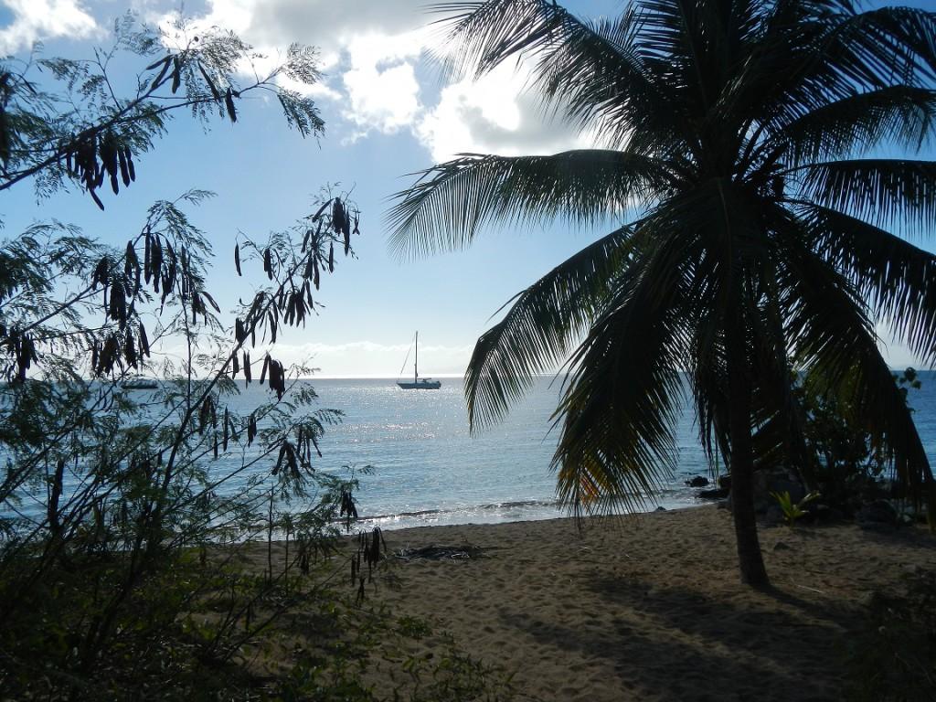 Voor anker in Vieques