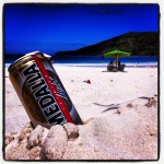 A Medalla op Flamingo beach
