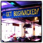 Did you get Bushwacked?!!