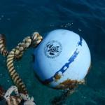 Marina Cay Snorkelplaats