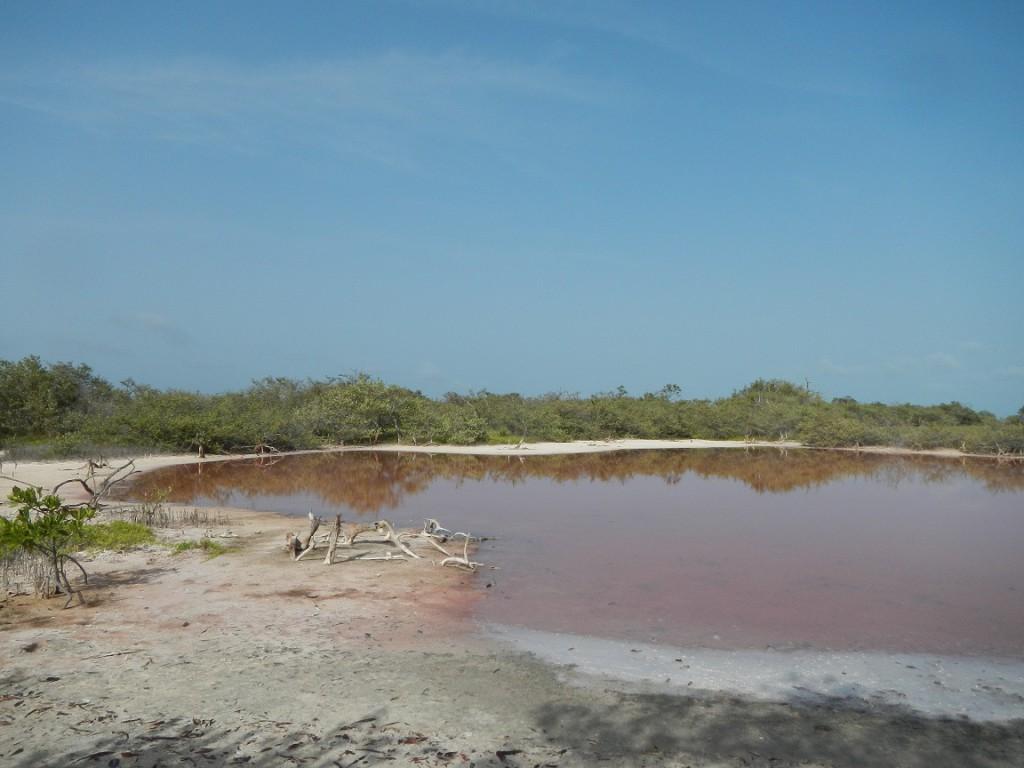Het roze meertje op Sarqui