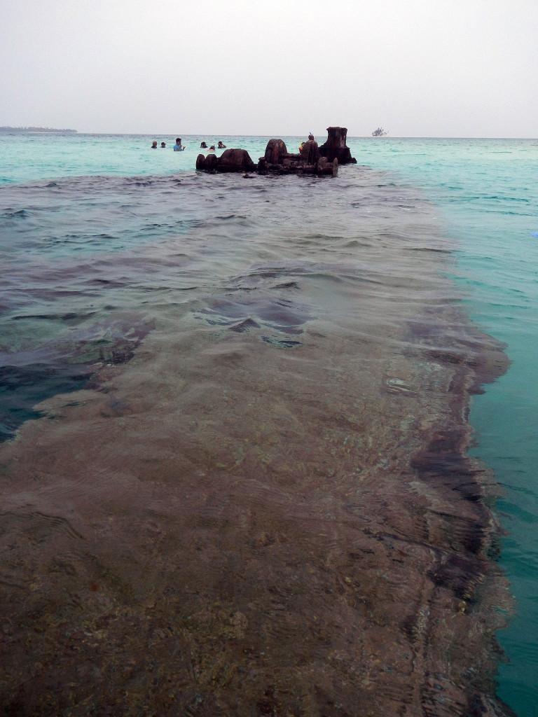 san Blas Dog Island
