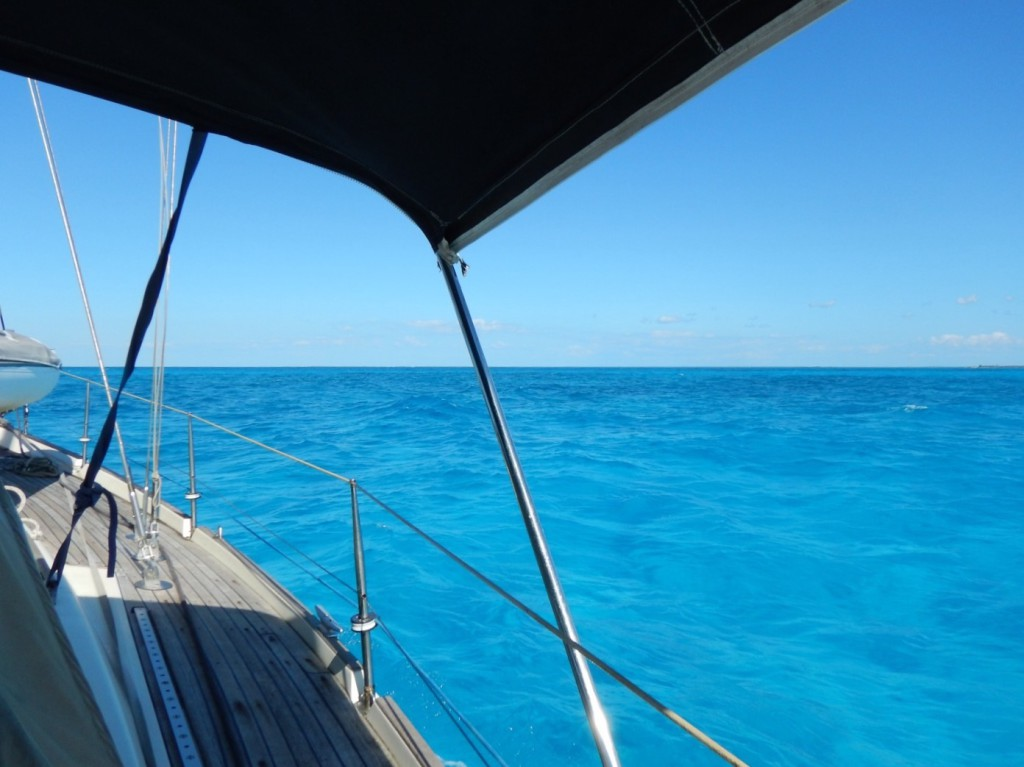 De wereld om ons heen is weer waanzinnig blauw!